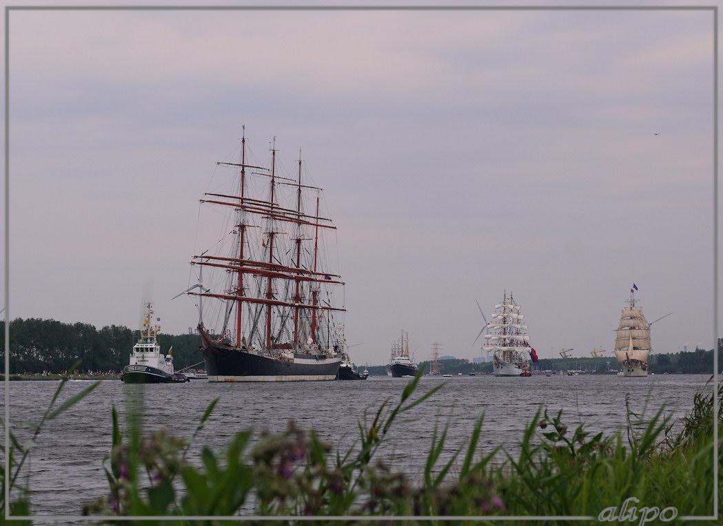 20150823_1858Sedov_Gloria_Europa_Noordzeekanaal_Sail