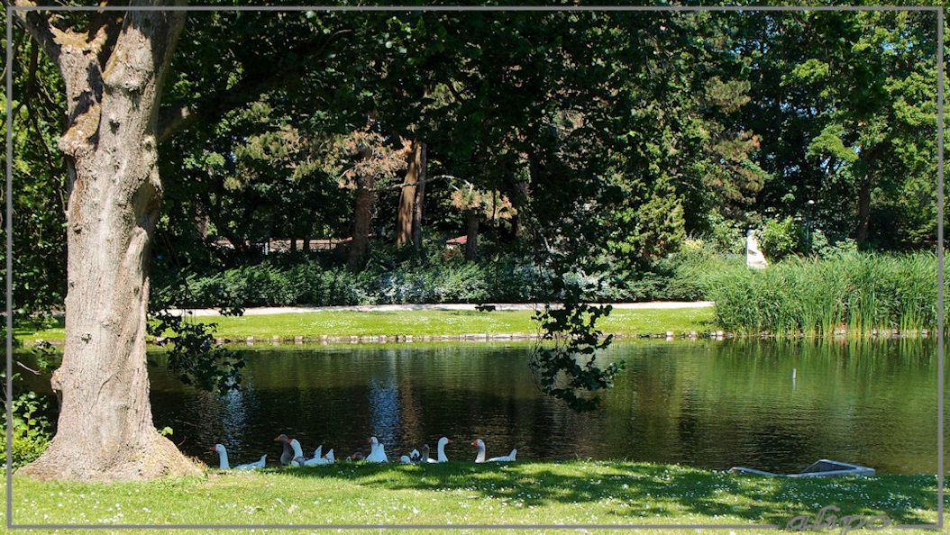 Park Enkhuizen Olympus XZ1