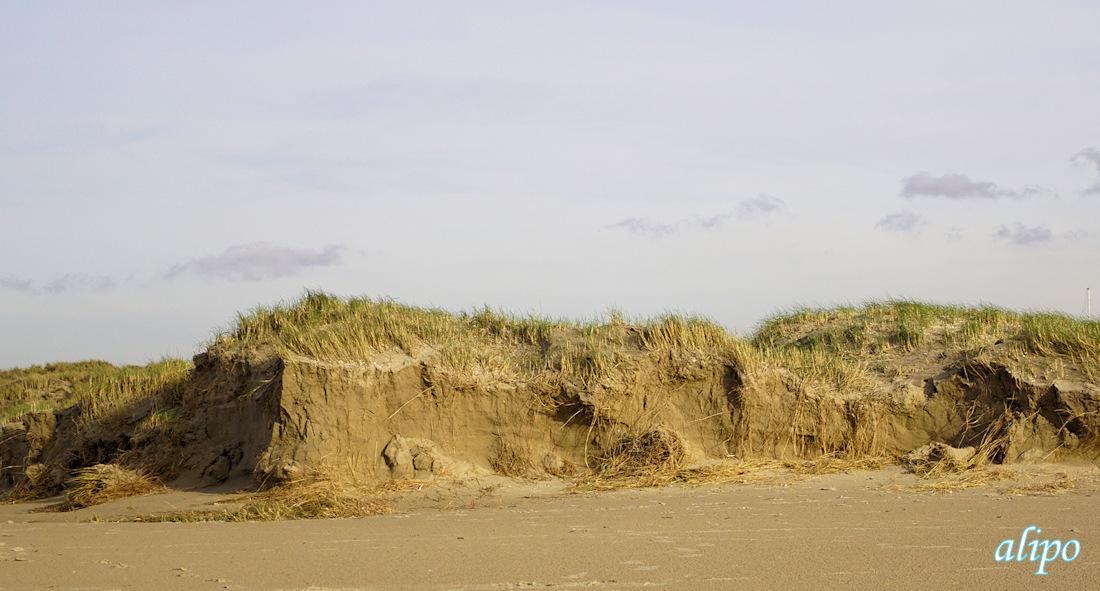afgeslagen_nieuw_duinen_strand2