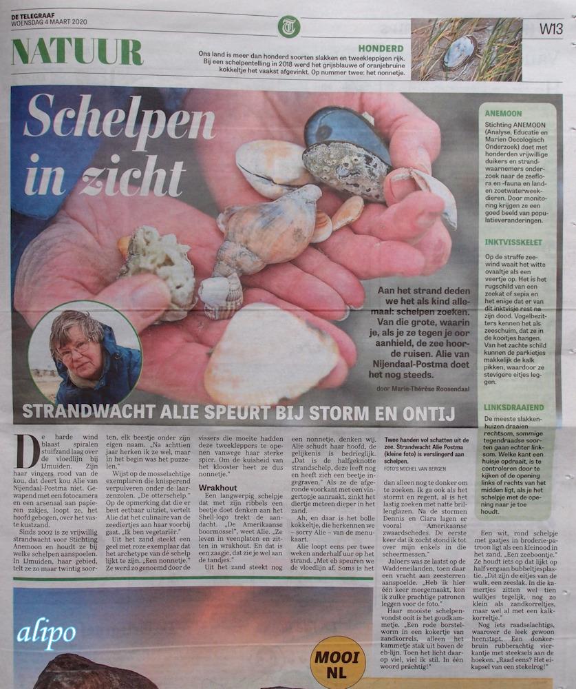 Telegraaf interview schelpen